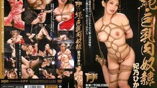 GTJ-013 縄・巨乳肉奴隷  妃乃ひかり Hikari Hino