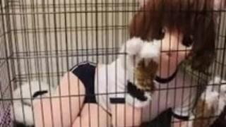 cocoasoft japaneseボンデージの息吹きキグルミボンデージwsm_mikeneko_cage