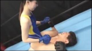 ジャパン混合格闘
