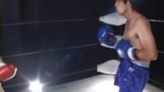 日本の混合ボクシングセックス
