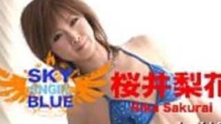 日本のセックス映画
