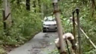 アジアの日本人熟女は、夫によってこの男に迷子になった - Pt2 On FilfCam.com